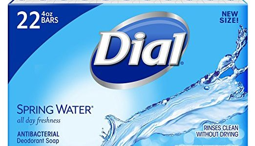 Dial Antibacterial Deodorant Soap, Spring Water